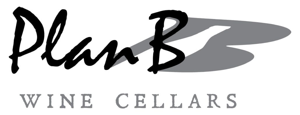 PlanB - Logo white